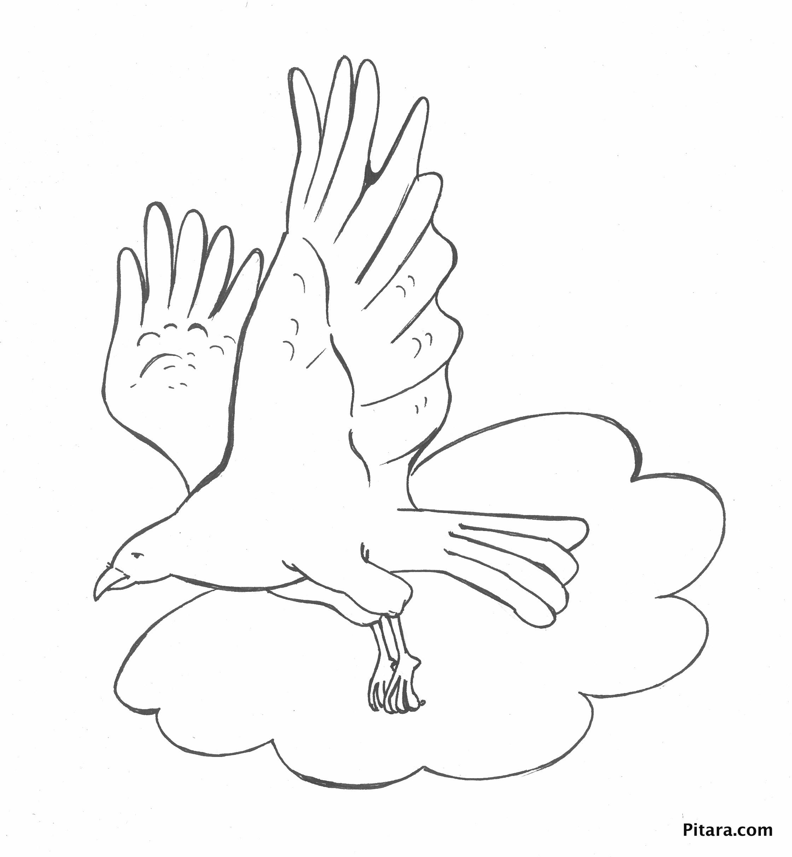 bird in clouds u2013 coloring page pitara kids network