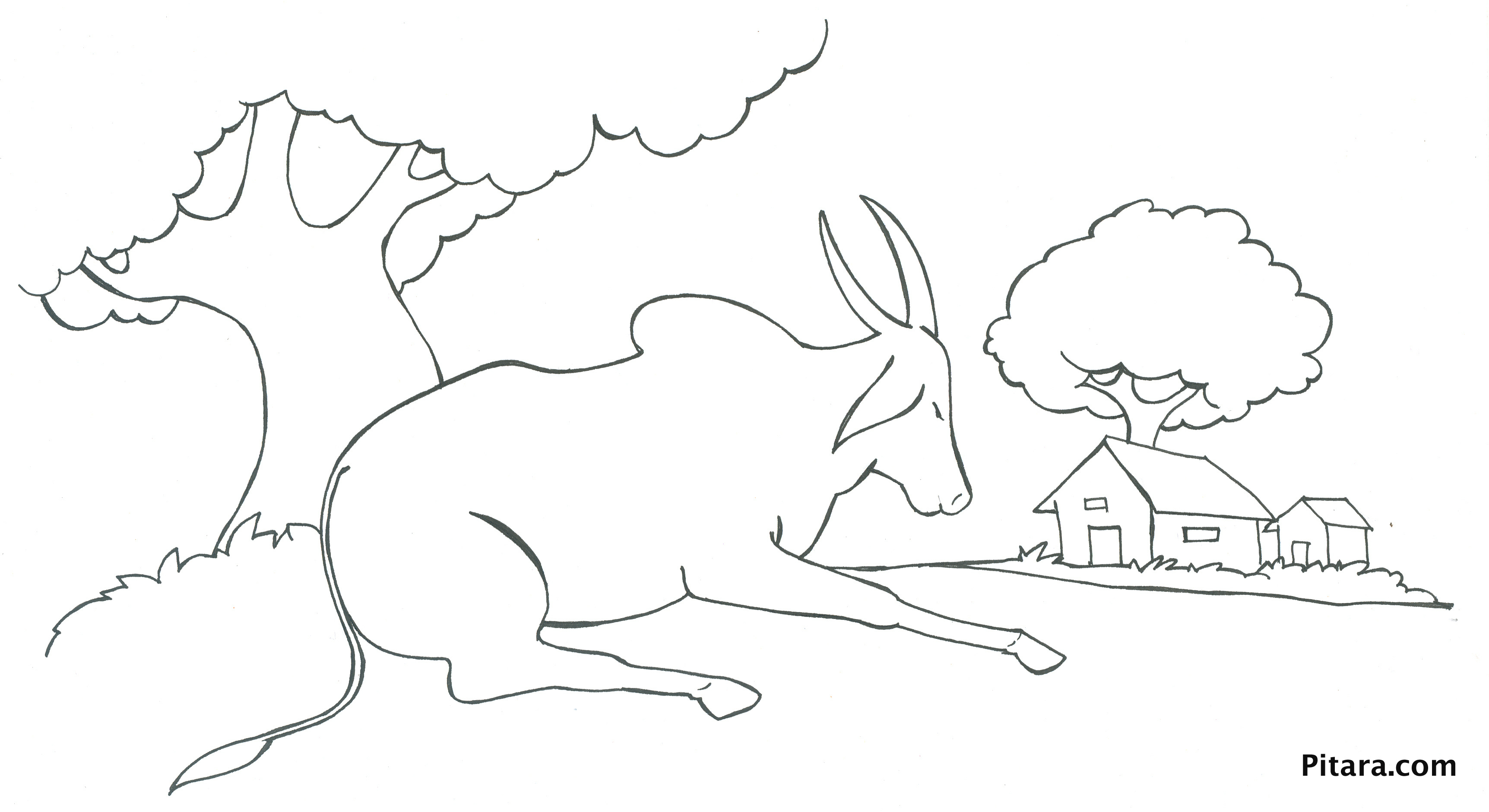 domestic animals coloring pages pitara kids network