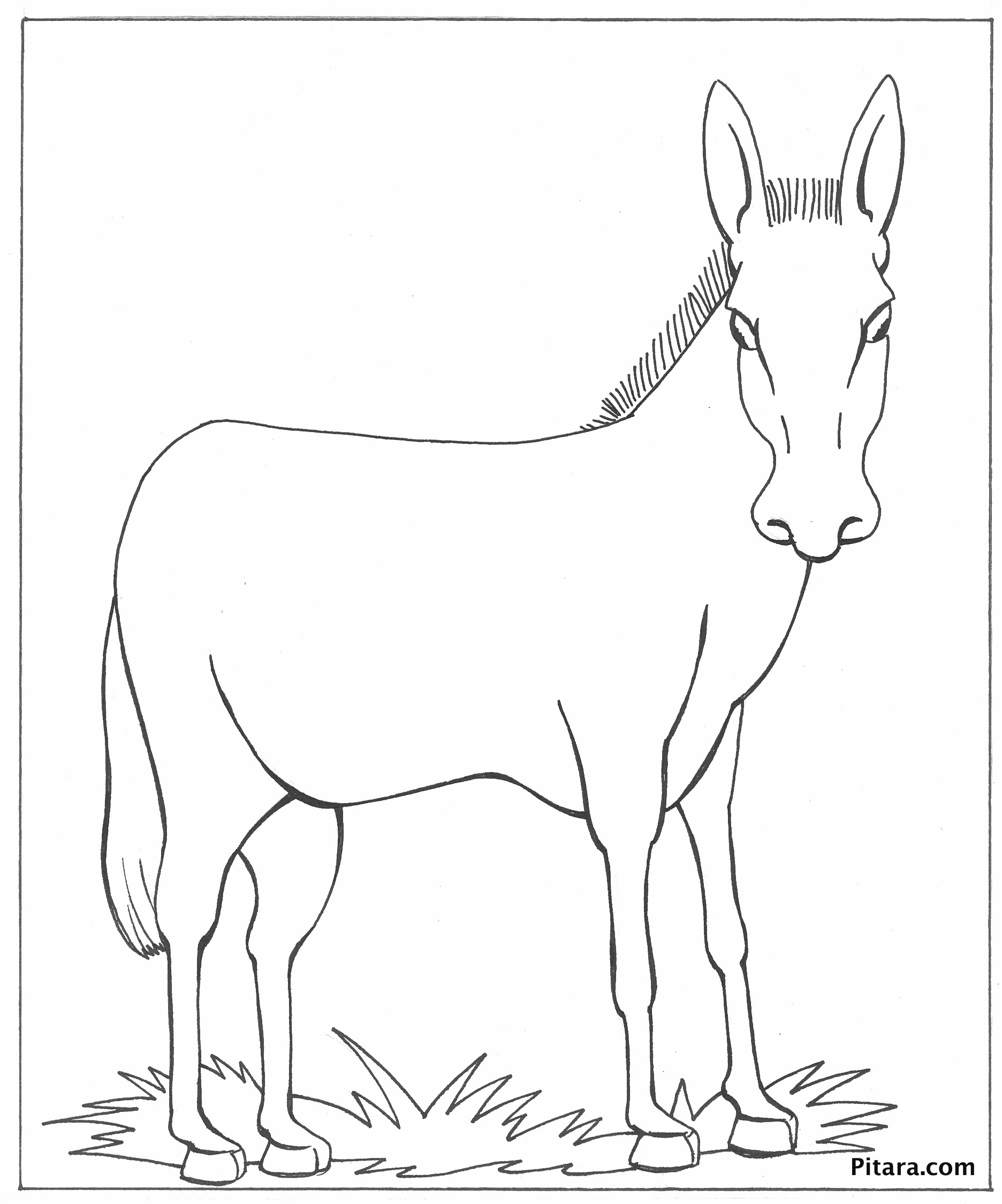 Donkey coloring page pitara kids network for Donkey coloring page
