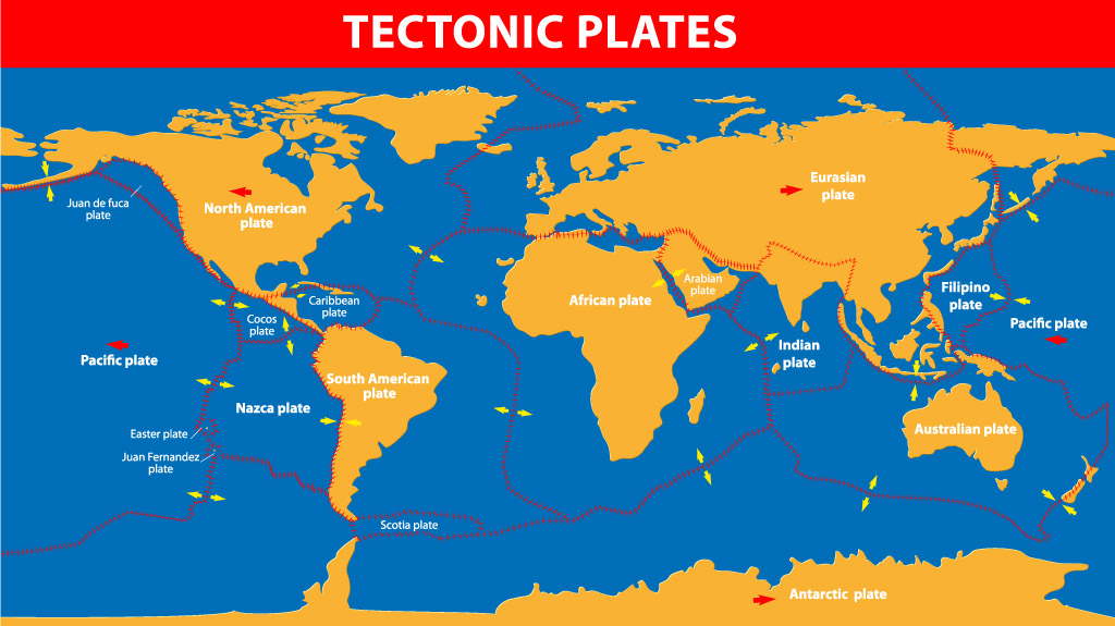 The tectonic plates of the world were mapped in the second half of the 20th century.
