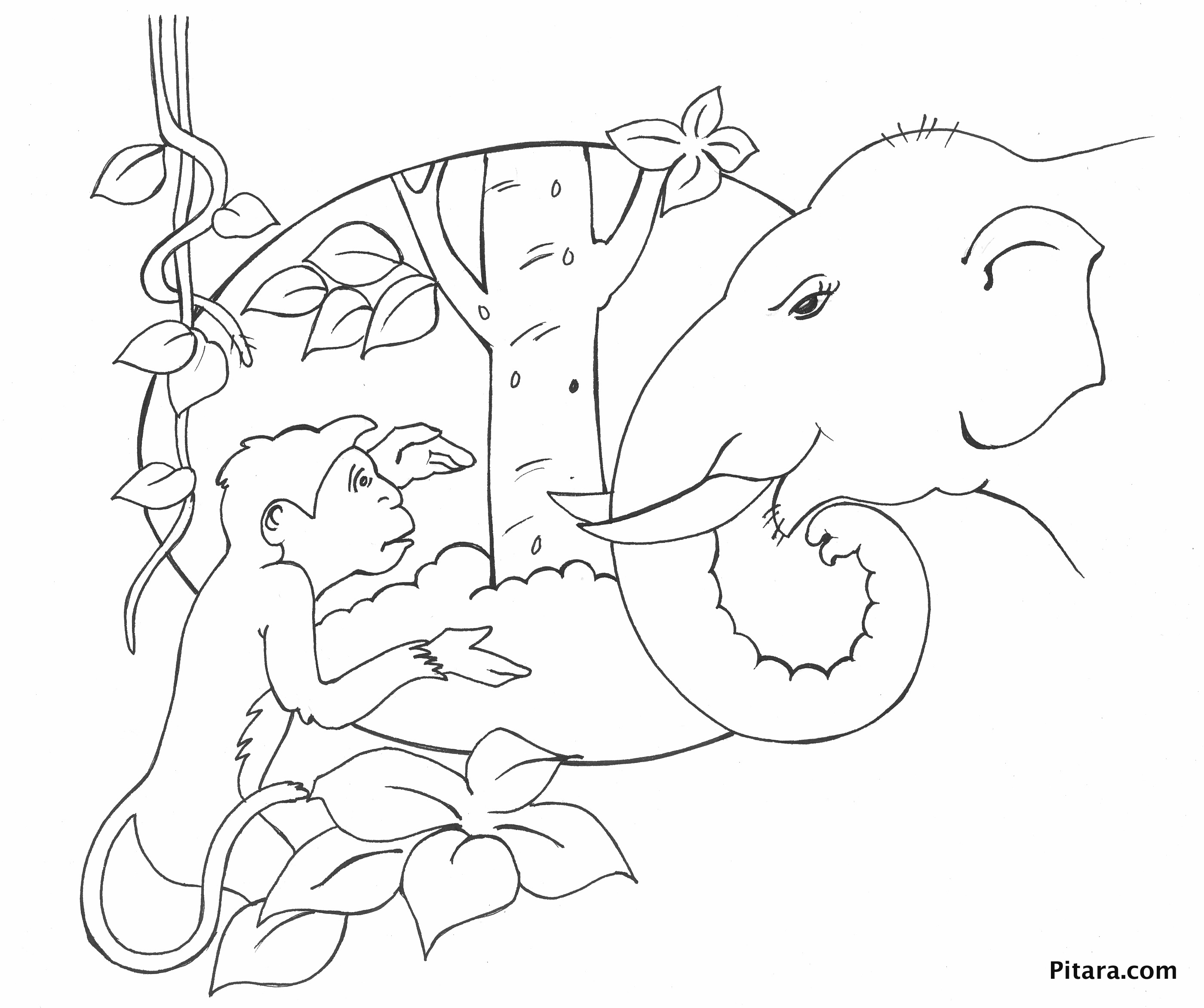 monkey u0026 elephant u2013 coloring page pitara kids network