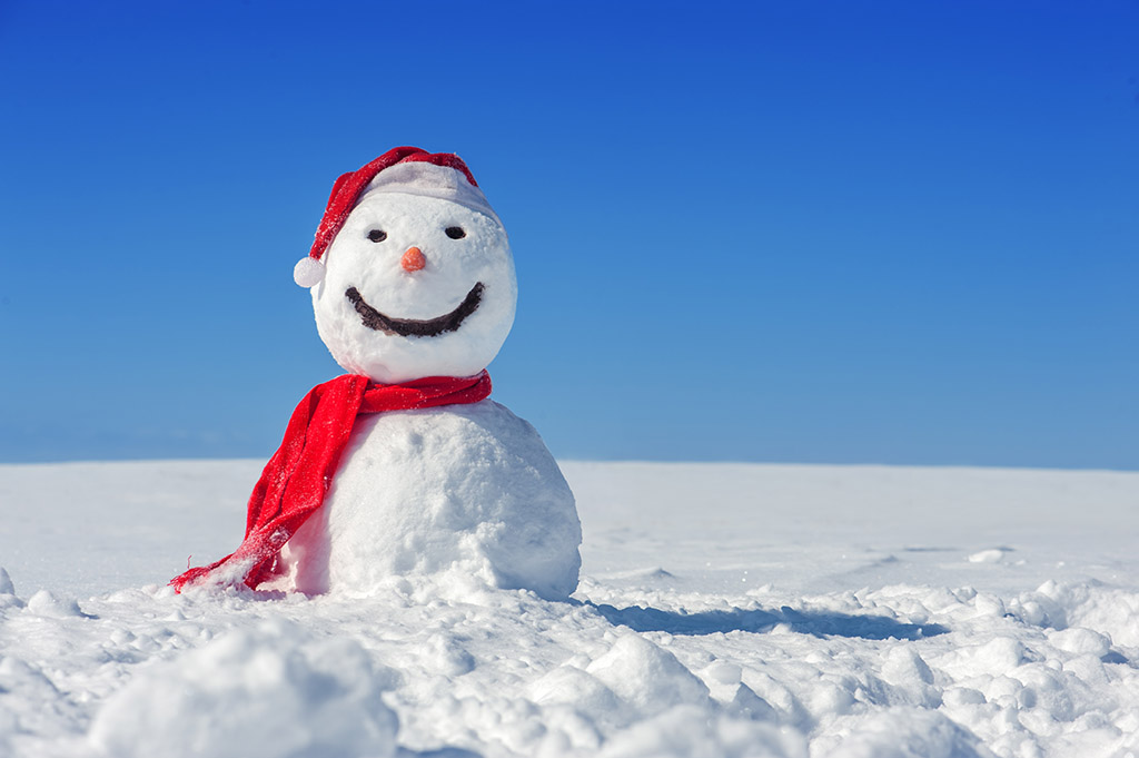 Image result for image of snow