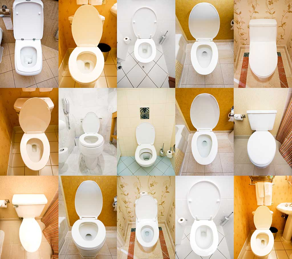 How Do Flush Toilets Work Pitara Kids Network